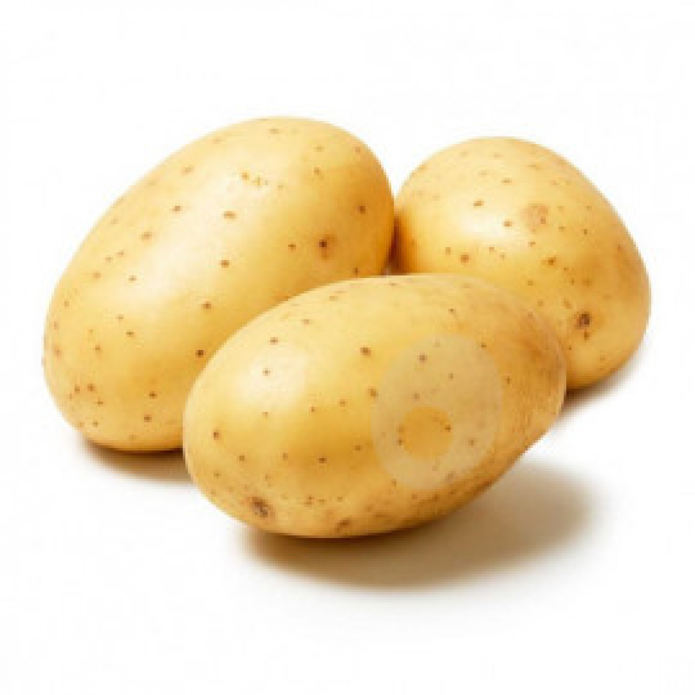 بطاطس