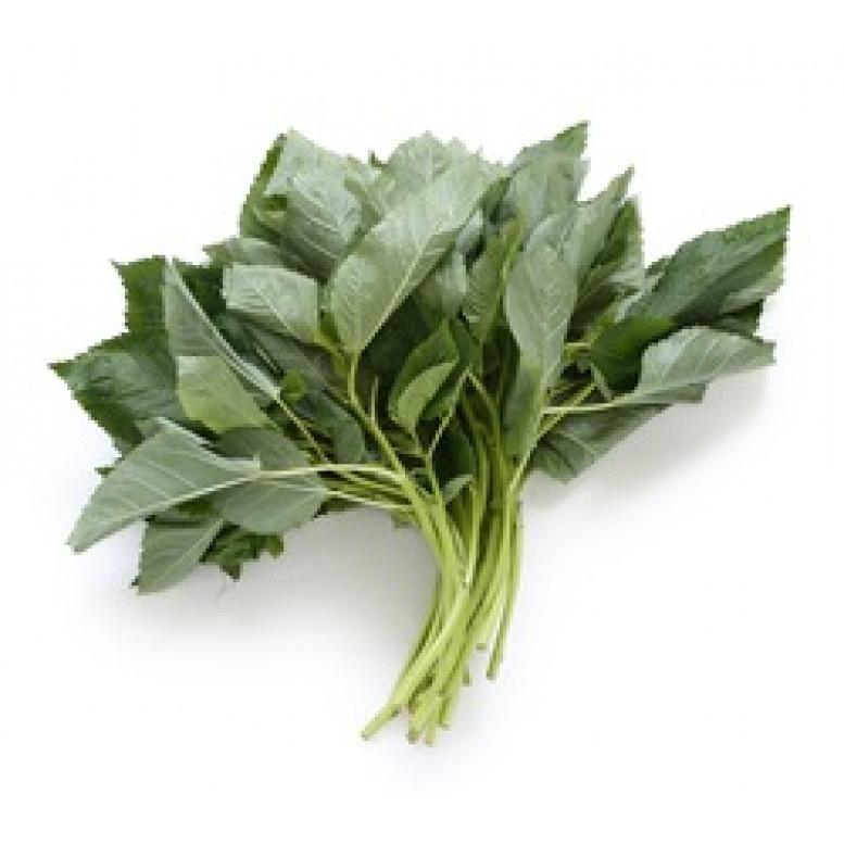 ملوخية خضراء