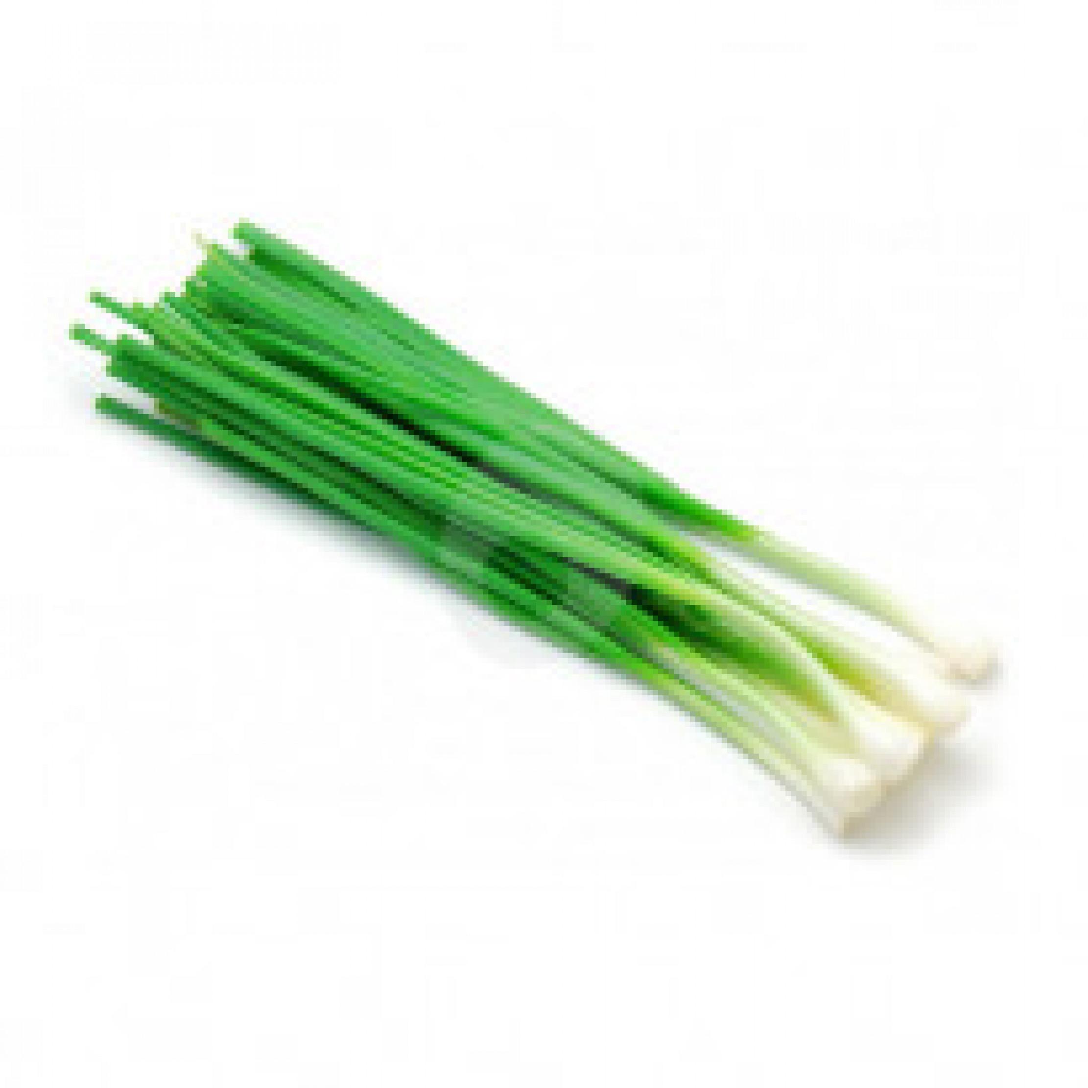 بصل اخضر